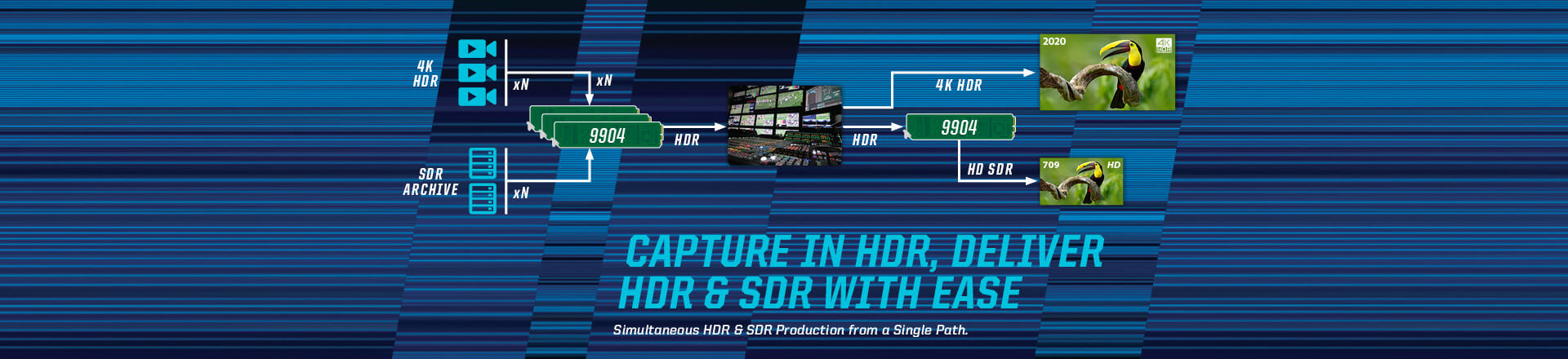 Capture in HDR, Deliver in HDR & SDR